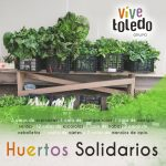huerto solidario